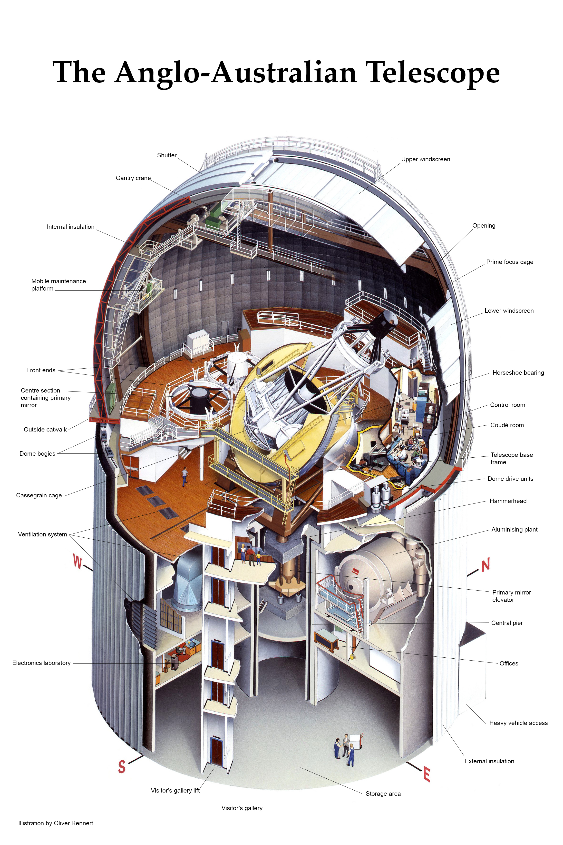 The Anglo-Australian Telescope Cross Section. Illustration by Oliver Rennert
